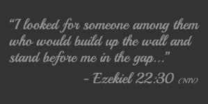 Ezekiel 22:30